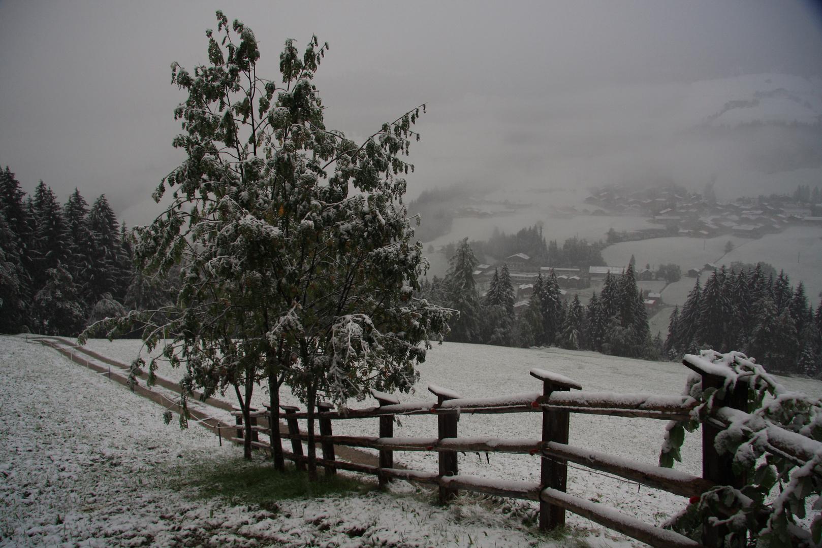 Das Tal hat sein winterlich Kleid angelegt...