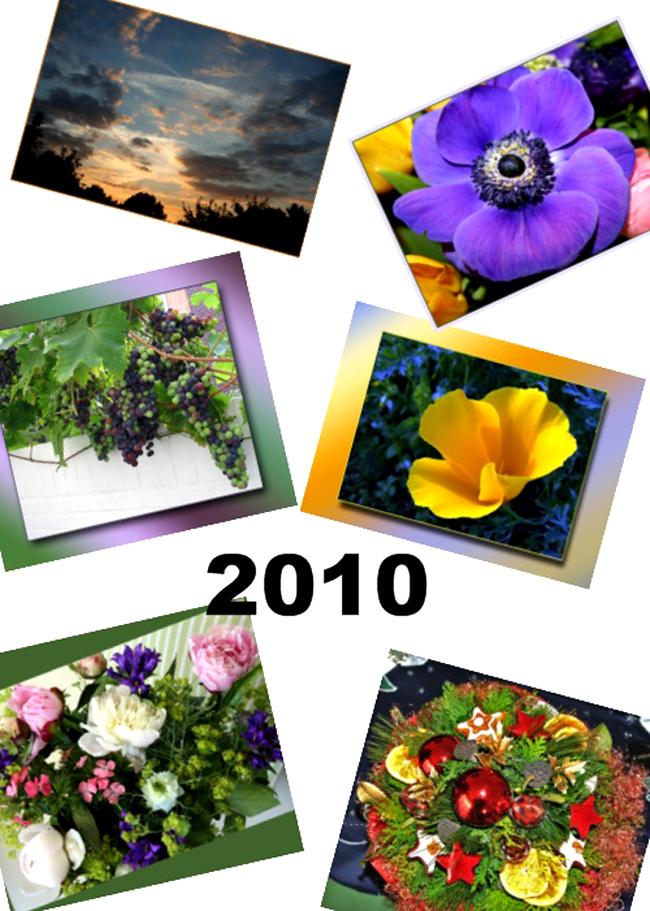 Das Titelblatt vom 2010 Kalender