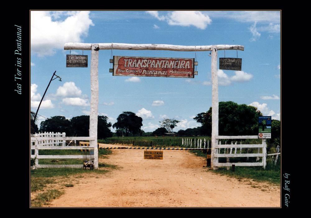 Das Tor ins Pantanal