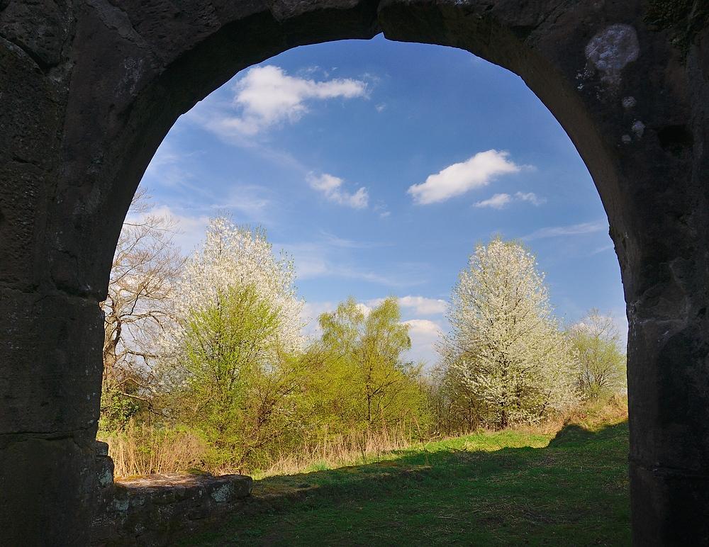 Das Tor zum Frühling, aufgenommen heute 6.04.14 bei der 4 Burgenwanderung im Grenzgebiet...
