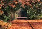 Das Tor zum Herbst