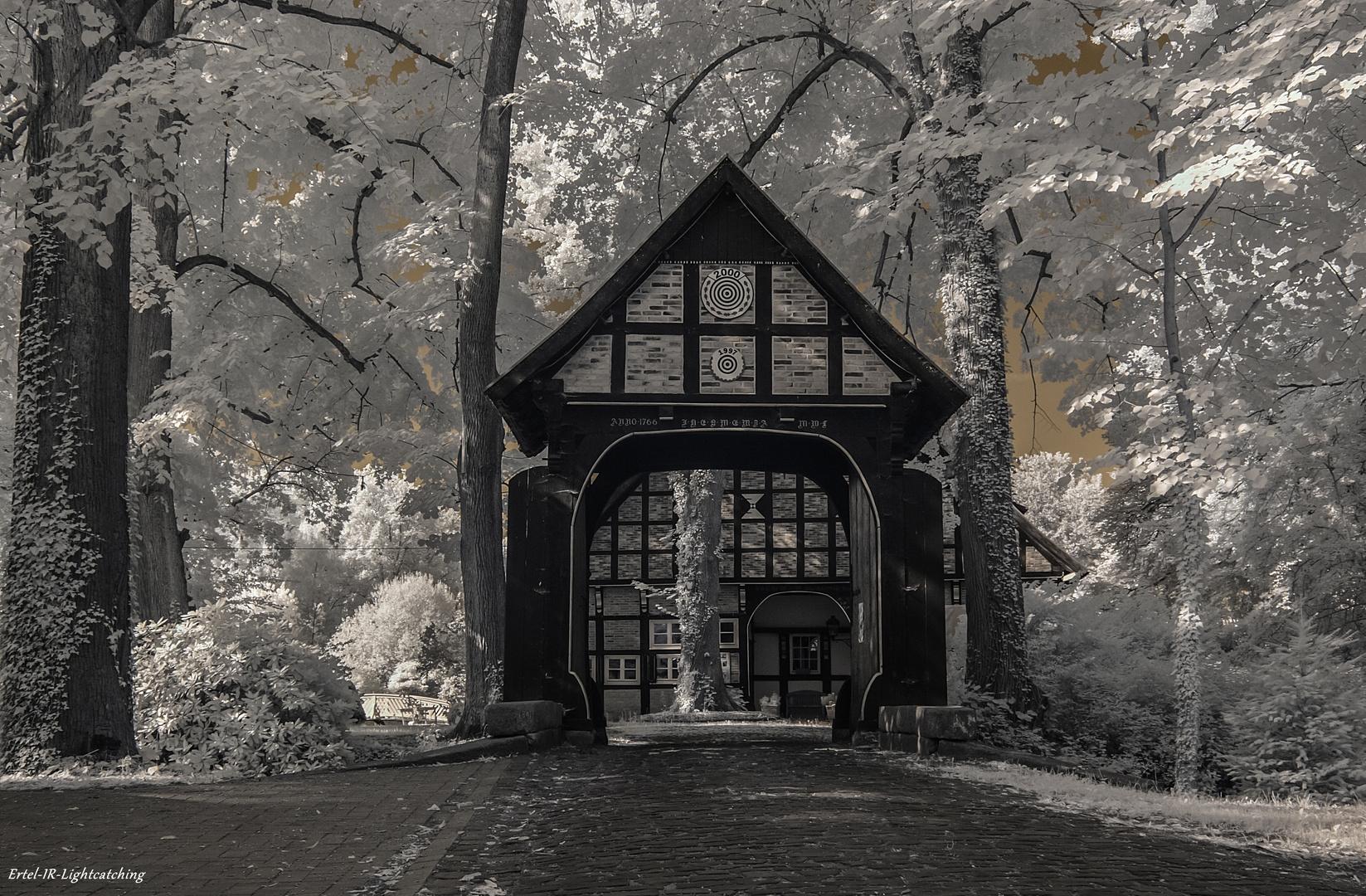 Das Tor zur infraroten Welt...