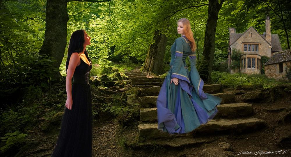 Das Treffen im Walde