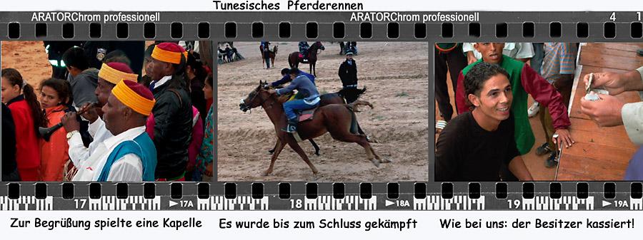 Das tunesische Pferderennen
