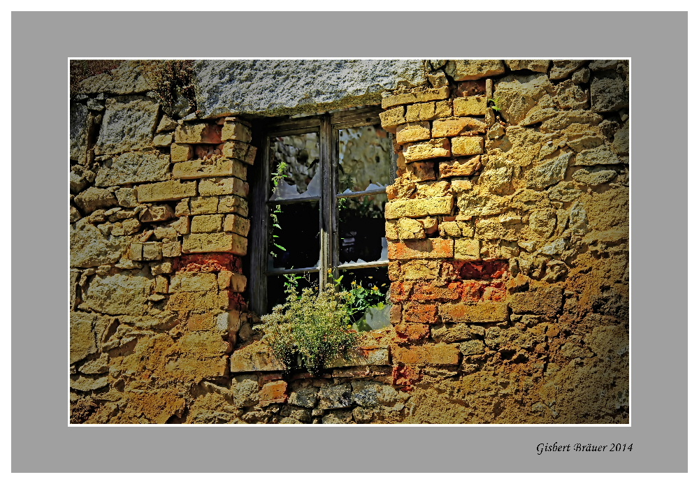 Das vergessene Fenster