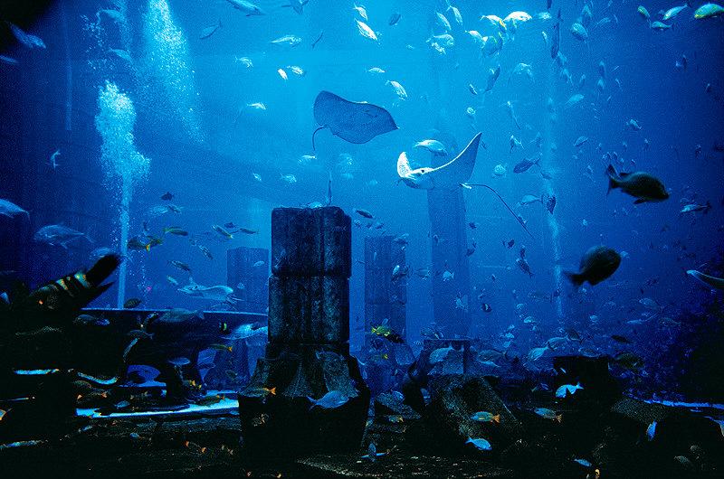 Das versunkene Atlantis