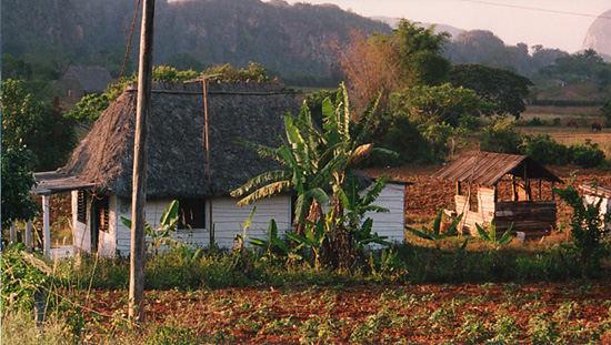 Das Vinales Tal in Cuba. Mi paradiso