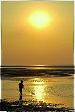 Das Wattenmeer und seine Faszination