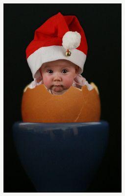 Das Weihnachtsei