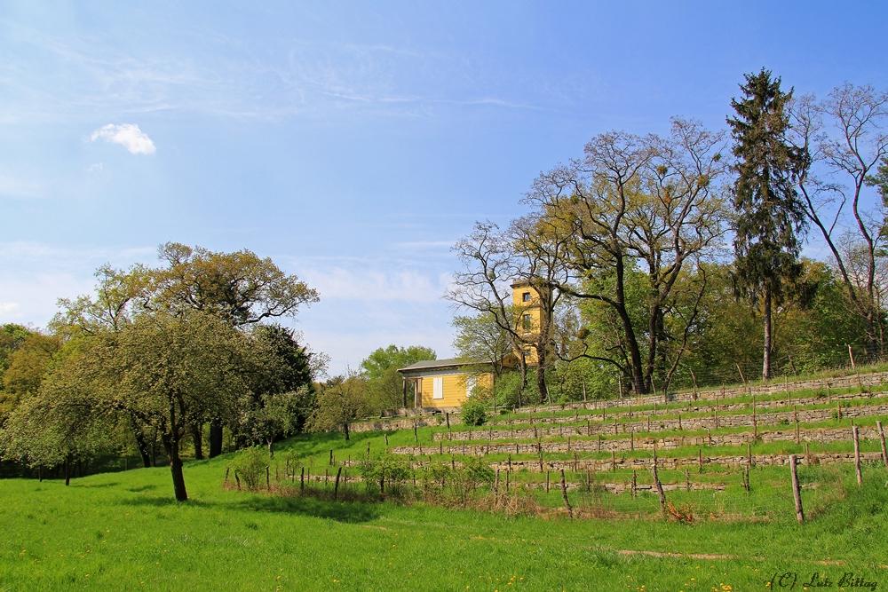 Das Weinbergshaus im Kühnauer Park