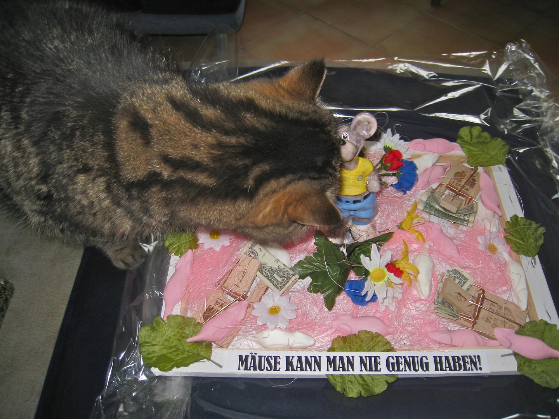 das weiß nicht nur die katze ...