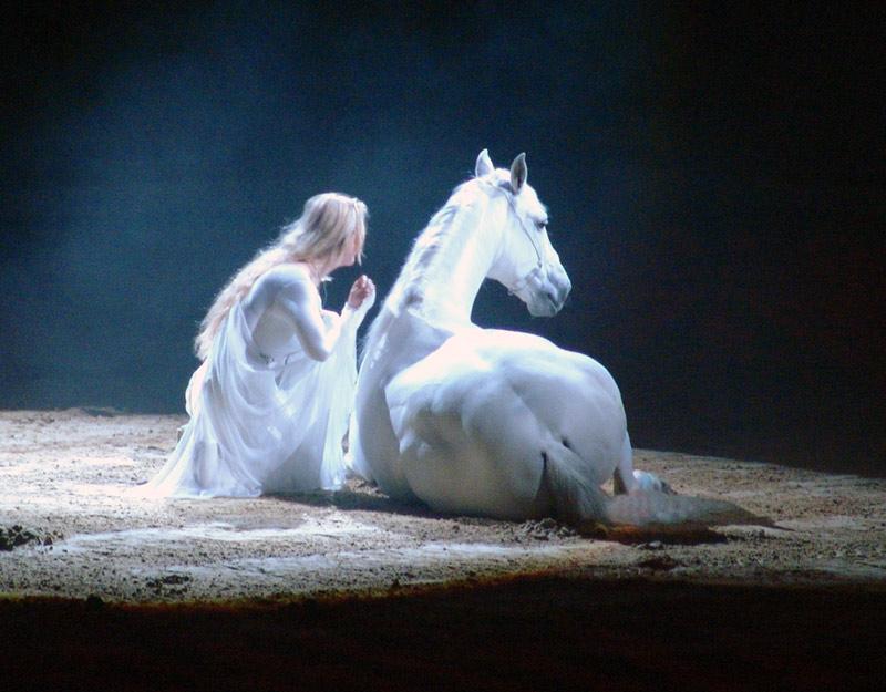 Das Wildpferd #2 by Britta V.
