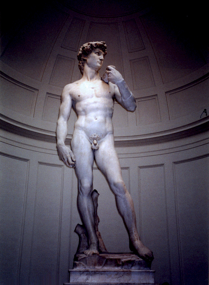 David by Michelangelo, Accademia di Belle Arti, Florence