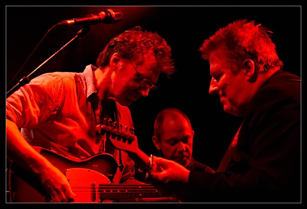 David Knopfler - Die Band -