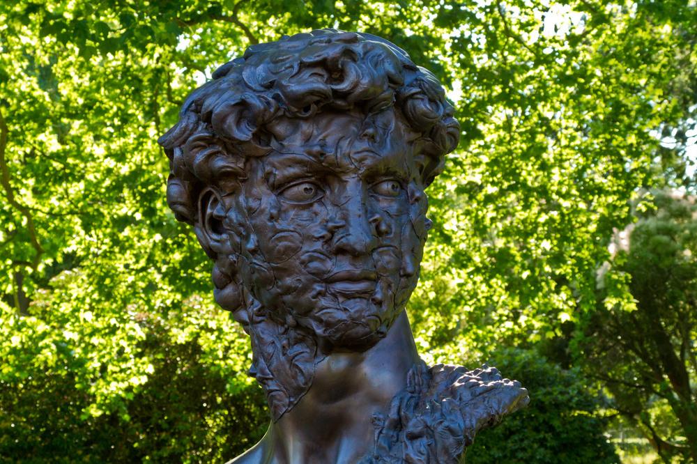 David / Self Portrait no. 11 (von Caspar Berger)
