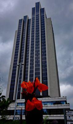 """DAVID UND GOLIATH::Auch das ist ein MiWoBlü vor dem """"Wolkenkratzer"""""""
