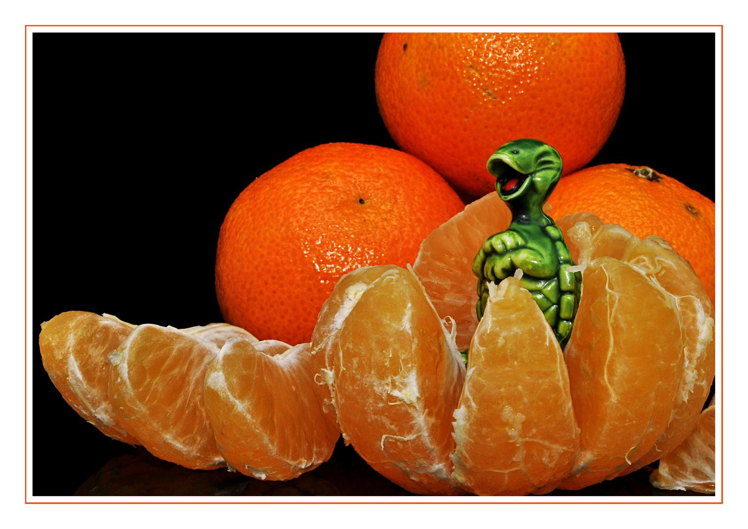 Davon bekommt man bestimmt Orangenhaut *