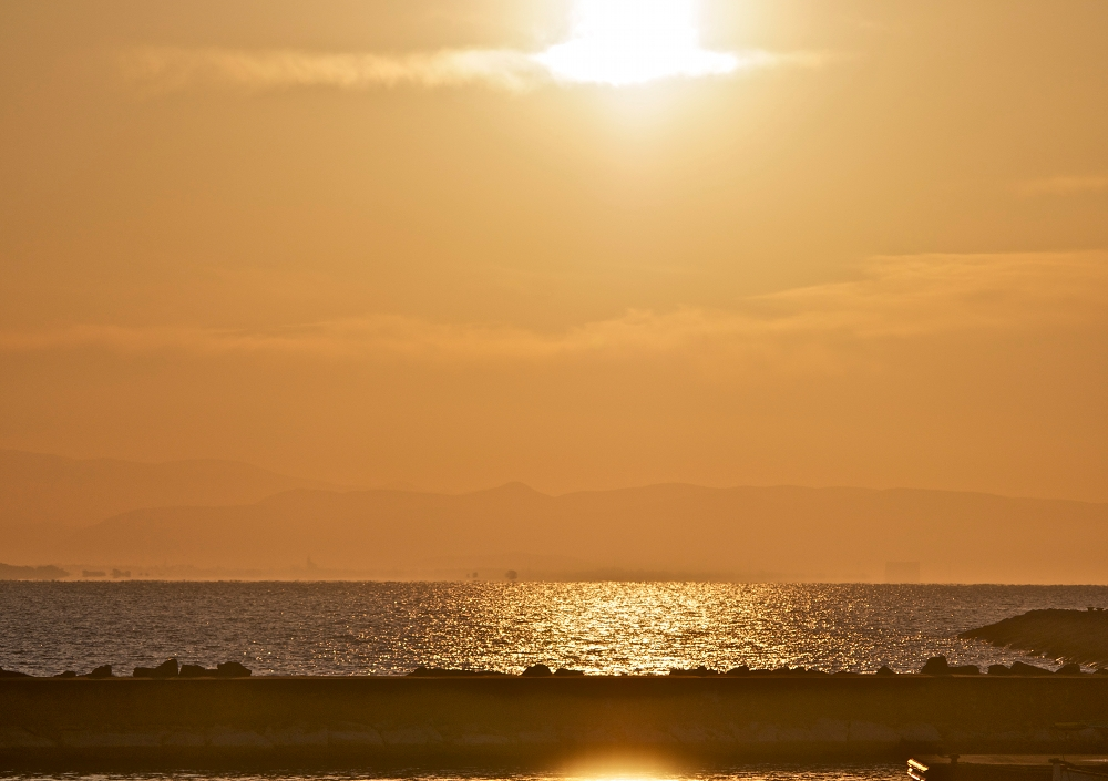 Dawn on February 13, 2012