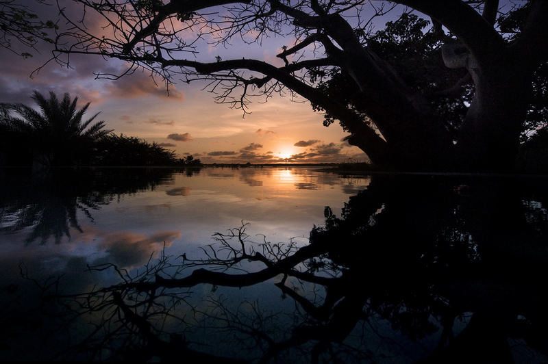 Dawn Over Lamu