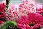 Day Love