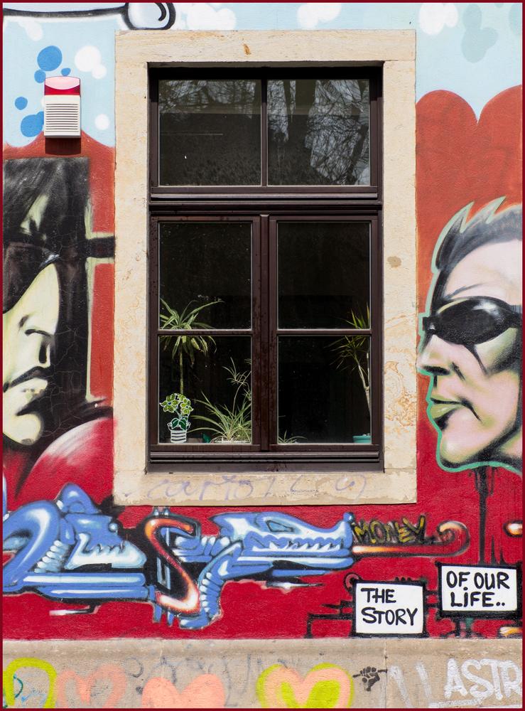 DD Neustadt Fenster 5
