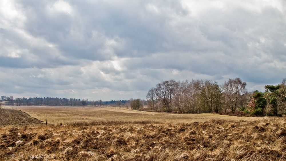 De Bergerheide - Niederlande