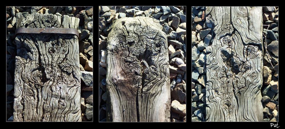 ...de ce bois qui forge nos chemins...