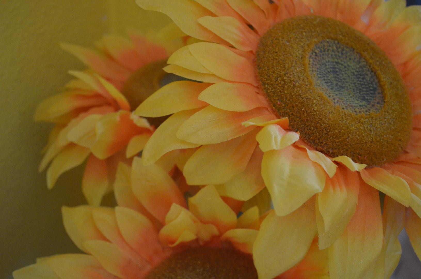 De flor en flor-