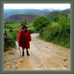 De la boue , de la pluie ..... un calvaire .