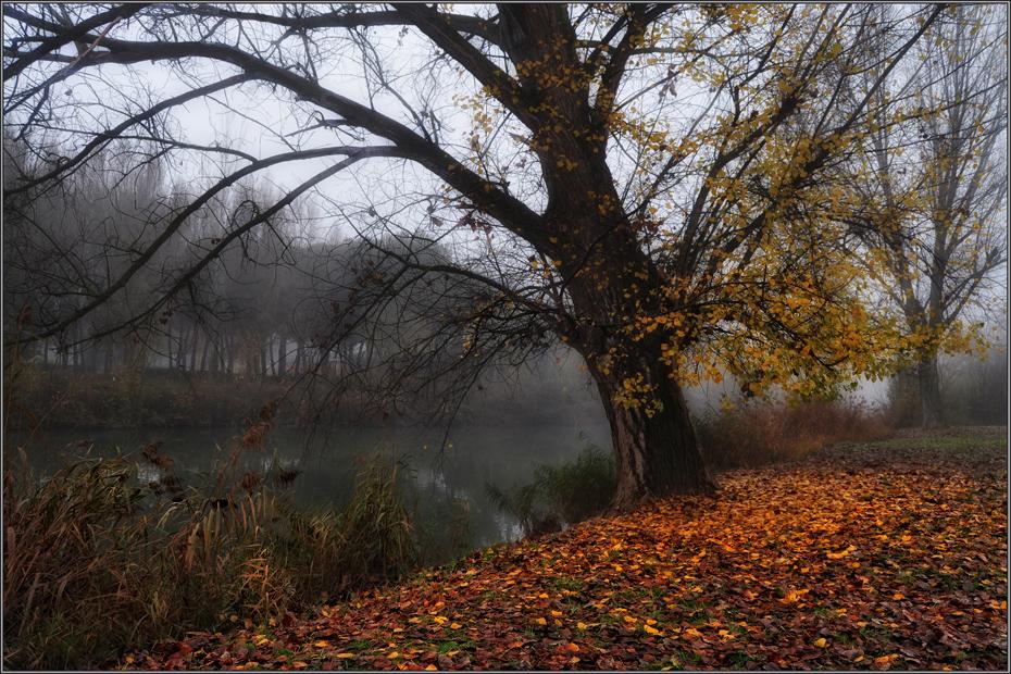 De otoño
