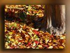 de pie junto a las hojas