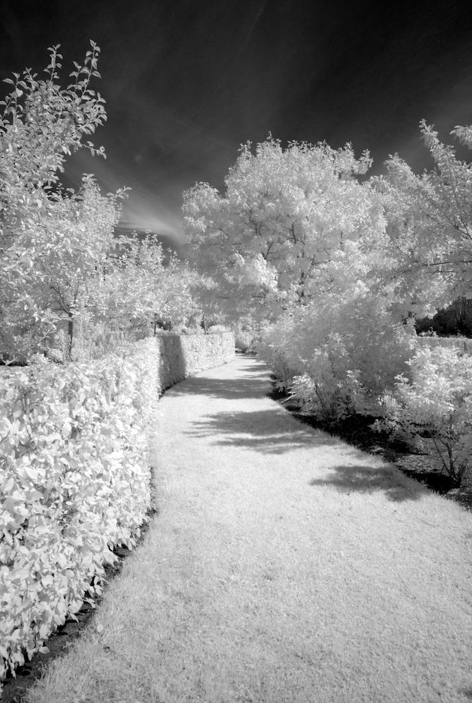 De tuin van Maurice IR