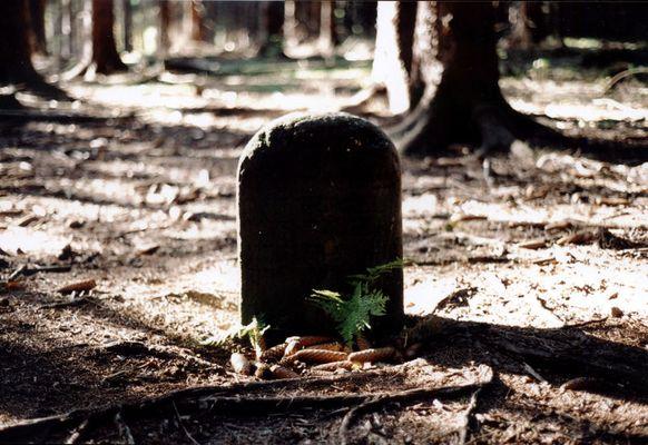 Dead Men`s Grave 2
