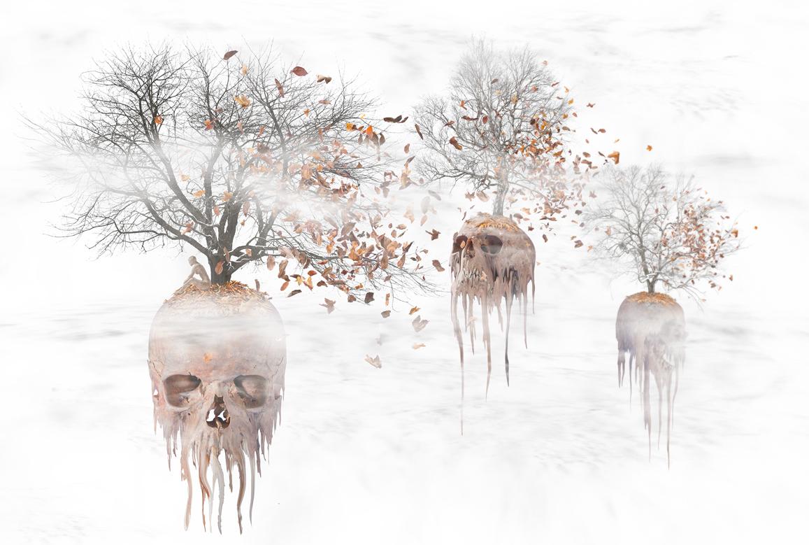 Deadleaves (Endversion)
