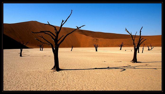 Deadvlei - Namibia's Stonehenge?