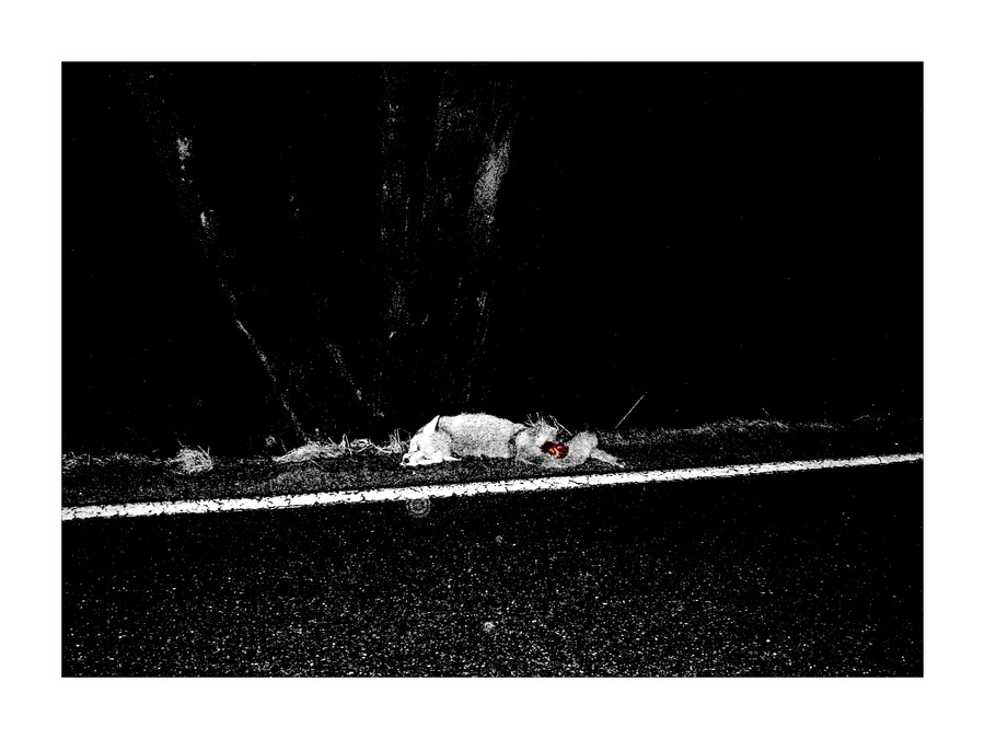 - death beyond the line -