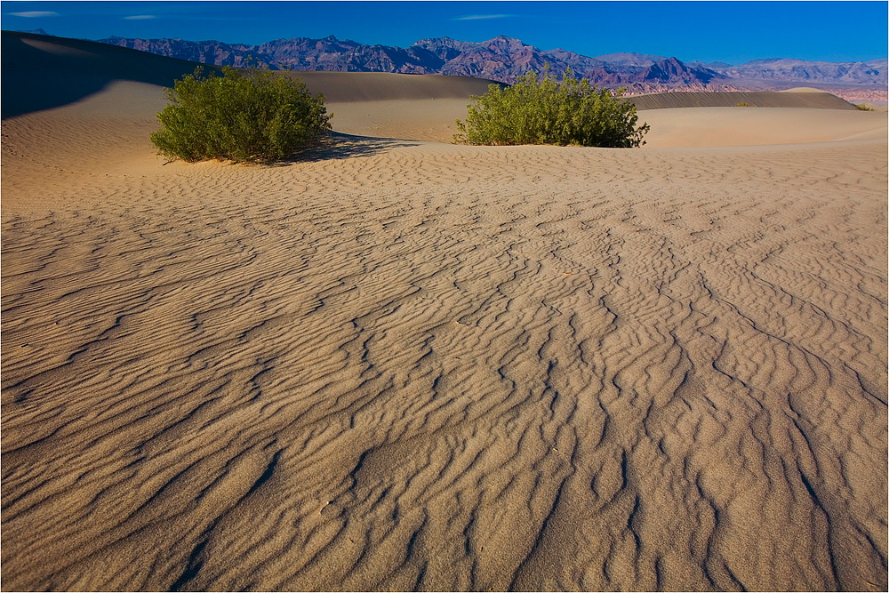 Death Valley, Stovepipe Wells, Structures I