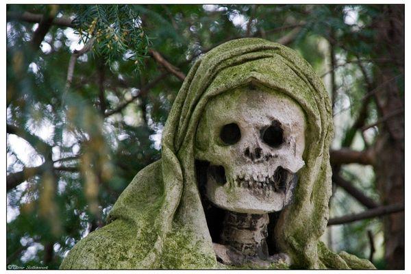 Death view