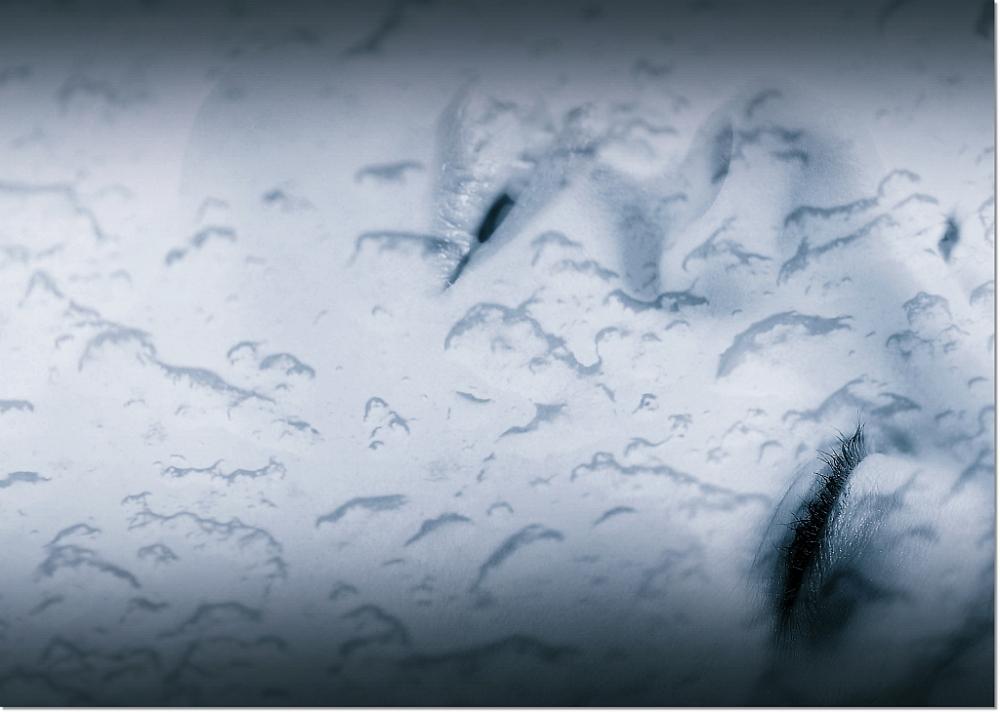 December Rain.......