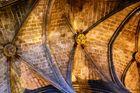 Decke der Kathedrale...