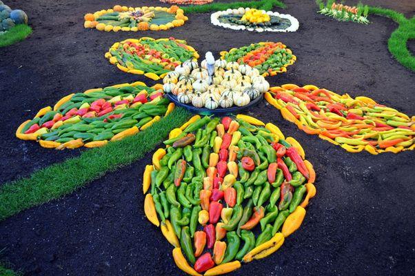 Décors de Légumes