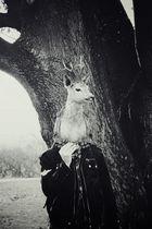 Deerman