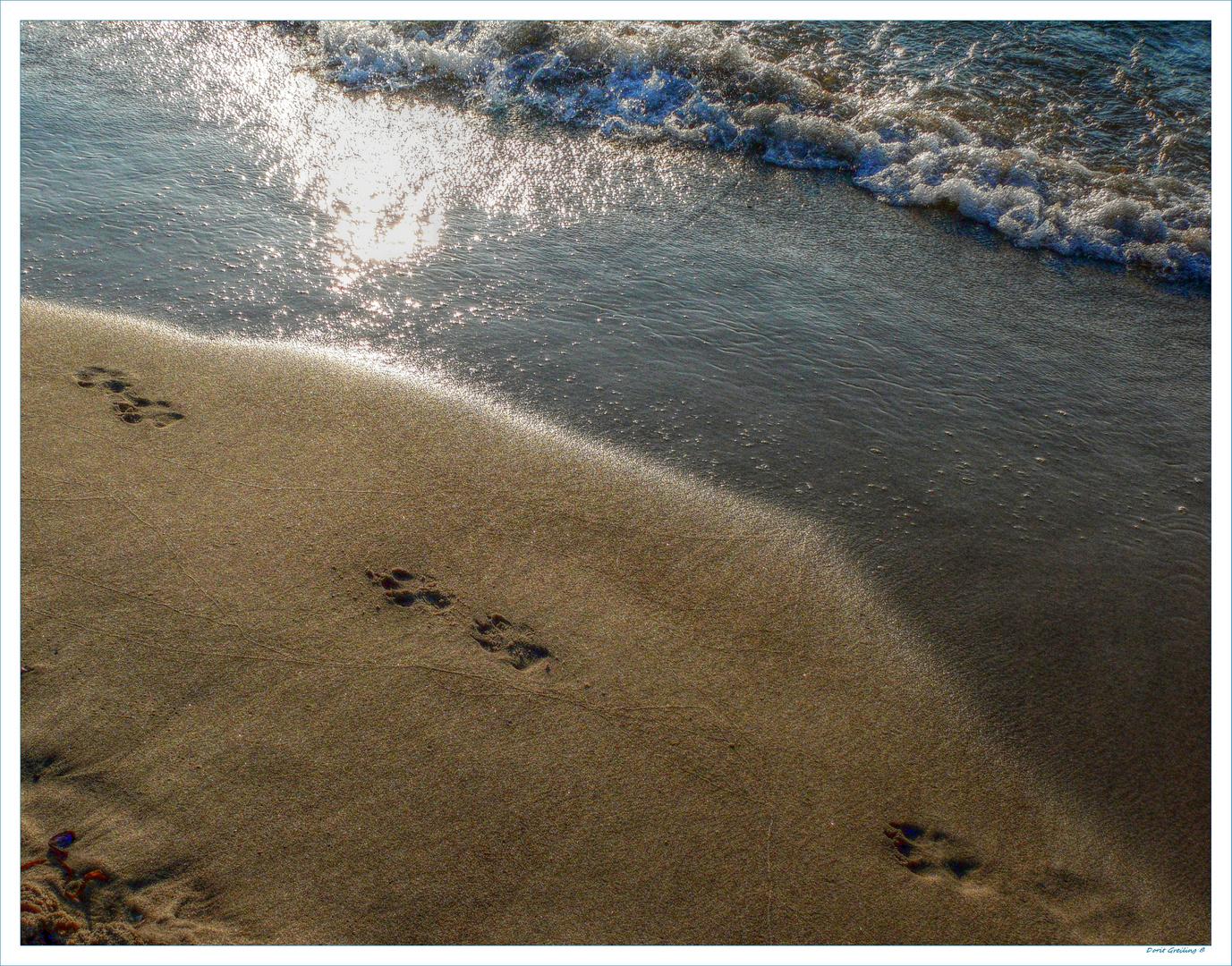 ... deine Spuren im Sand