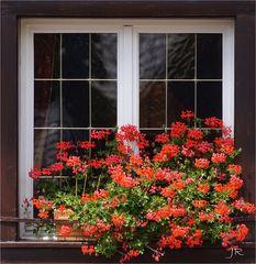 Dekoratives Fenster