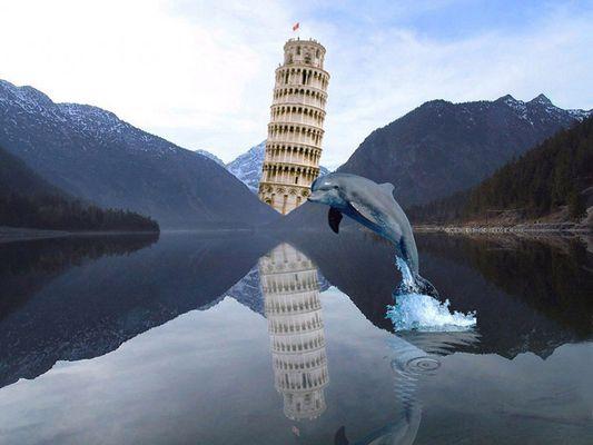 Delfin im Plansee bei Pisa :-)