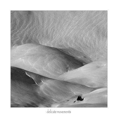 """""""Delicate movements"""" di Stefano Genuardi"""