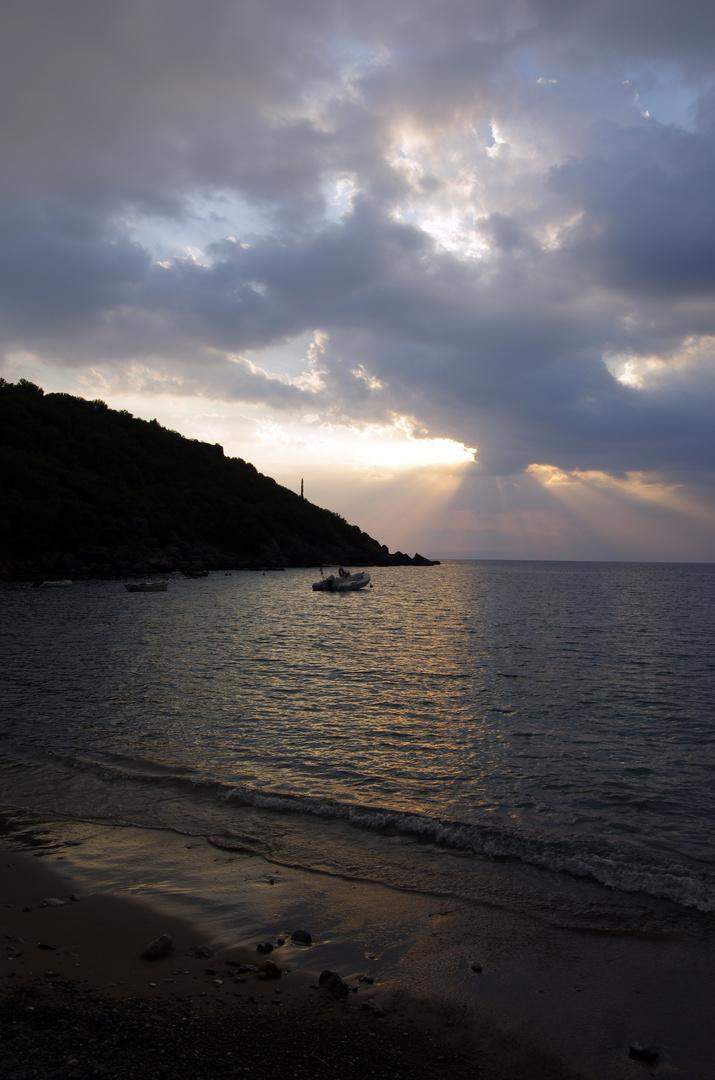 Delphinia Beach
