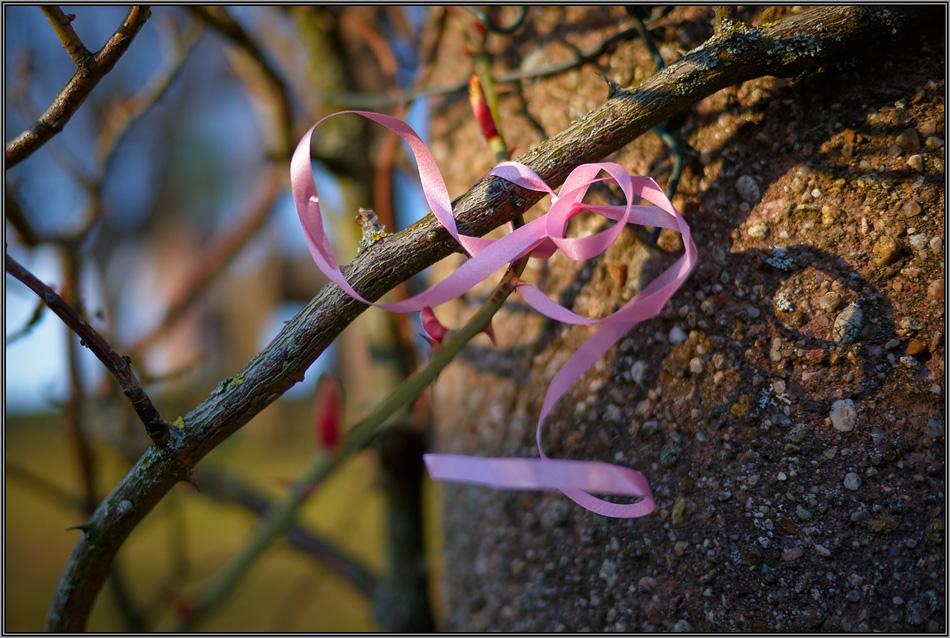 Dem Frühling eine Schleife binden ...