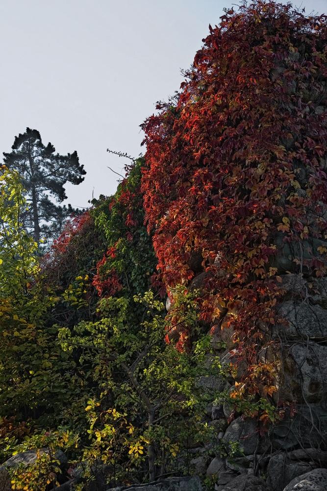 Dem Herbst auf der Spur