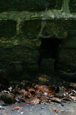 dem Keller (kühl und unbehaglich) fotografisch zusetzen